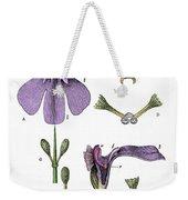 Darwins Orchis Pyramidalis, Illustration Weekender Tote Bag