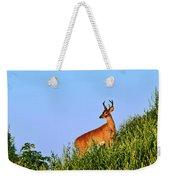 Deer Buck. Weekender Tote Bag
