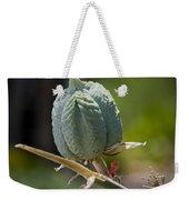 Desert Seed Pod 1 Weekender Tote Bag