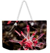Desert Wildflower Weekender Tote Bag