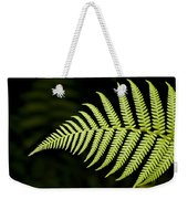Detail Of Asian Rain Forest Ferns Weekender Tote Bag