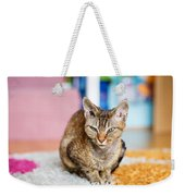 Devon Rex Purebred Domestic Cat Weekender Tote Bag