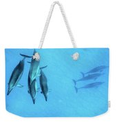 Dolphins At Rest Weekender Tote Bag