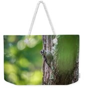 Downy Woodpecker In The Wild Weekender Tote Bag