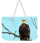 Eagle's View Weekender Tote Bag