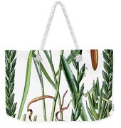 Elymus Repens, Commonly Known As Couch Grass Weekender Tote Bag