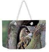 Eurasian Eagle-owl Bubo Bubo Looking Weekender Tote Bag