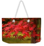 Fall Color Maple Leaves At The Forest In Aomori, Japan Weekender Tote Bag