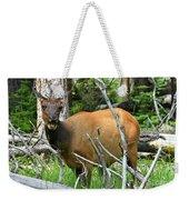 Female Elk Yellowstone Weekender Tote Bag