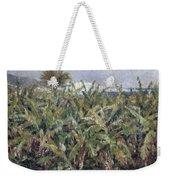Field Of Banana Trees Weekender Tote Bag