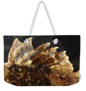 Fin Of Shorthorn Sculpin Weekender Tote Bag