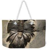 Fossil Weekender Tote Bag