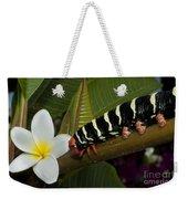 Frangipani Tree And Caterpillar Weekender Tote Bag