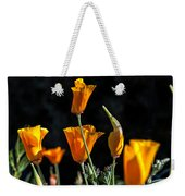 From Darkness Into The Light Weekender Tote Bag
