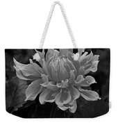 From Your Window Weekender Tote Bag