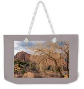 Garden Of The Gods Entrance Weekender Tote Bag