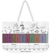 Geologic Time Line Weekender Tote Bag