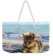 Gray Cat On The Background Of The Sea 1 Weekender Tote Bag