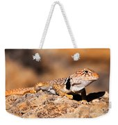 Great Basin Collared Lizard Weekender Tote Bag