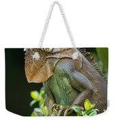 Green Iguana Iguana Iguana, Sarapiqui Weekender Tote Bag
