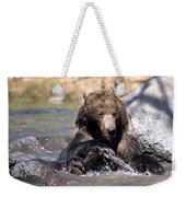 Grizzly Bear Plays In Water Weekender Tote Bag