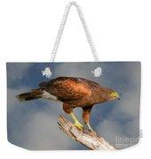 Harris's Hawk On Watch Weekender Tote Bag