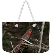 Hepatic Tanager At The Coba Ruins Weekender Tote Bag