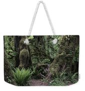 Hoh Rain Forest 3389 Weekender Tote Bag
