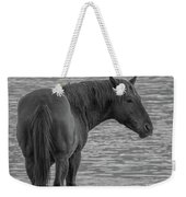 Horse 10 Weekender Tote Bag