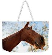 Horse In The Paddock Weekender Tote Bag