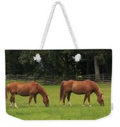 Horses In A Field Weekender Tote Bag