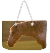 Horses In The Evening Light Weekender Tote Bag