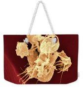 Human Thrombocytes Platelets, Sem Weekender Tote Bag