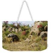 Hunting Lionesses Weekender Tote Bag