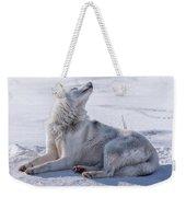 Huskies In Ilulissat, Greenland Weekender Tote Bag