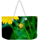 Illumination Weekender Tote Bag by Frozen in Time Fine Art Photography