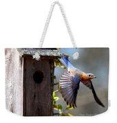 Img_1414-003 - Eastern Bluebird Weekender Tote Bag