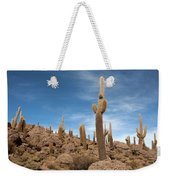 Incahuasi Island View With Giant Cacti Weekender Tote Bag