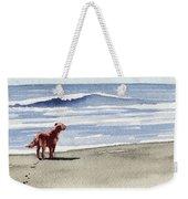 Irish Setter At The Beach Weekender Tote Bag