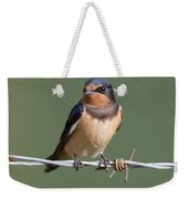 Juvenile Barn Swallow Weekender Tote Bag