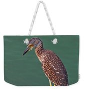 Juvenile Black Crowned Night Heron Weekender Tote Bag
