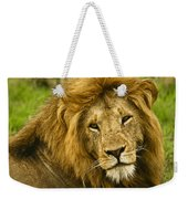 King Of The Savanna Weekender Tote Bag