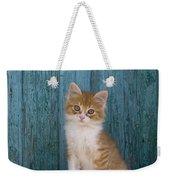 Kitten On A Greek Island Weekender Tote Bag