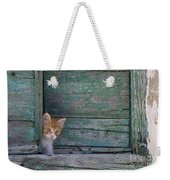 Kitten Peeking Out Weekender Tote Bag