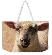 Lamb Looking Cute. Weekender Tote Bag