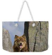 Lapinko�ra Dog And His Pup Weekender Tote Bag