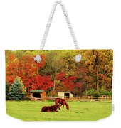 Lazy Autumn Day Weekender Tote Bag