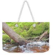 Leaning Tree Trunk By A Stream Weekender Tote Bag