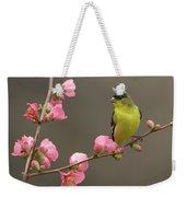 Lesser Goldfinch Weekender Tote Bag