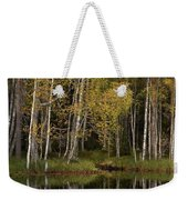 Liesilampi In September 3 Weekender Tote Bag